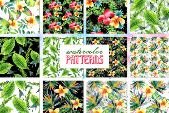 Print on Demand: Tropics Watercolor Png Graphic Illustrations By MyStocks - Image 3