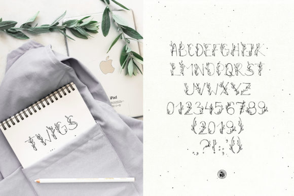 Print on Demand: Twigs Script & Handwritten Font By webvilla - Image 4