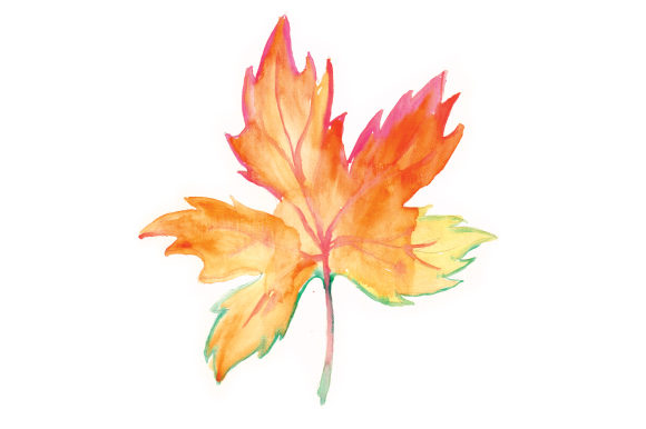 Download Free Watercolor Autumn Leaf Svg Cut File By Creative Fabrica Crafts for Cricut Explore, Silhouette and other cutting machines.