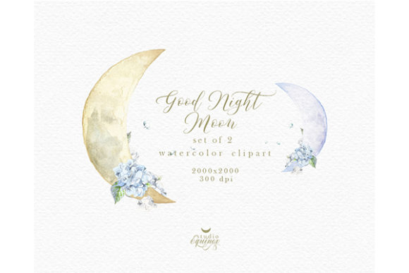 Whimsical New Moon Clipart Graphic Illustrations By studioequinox