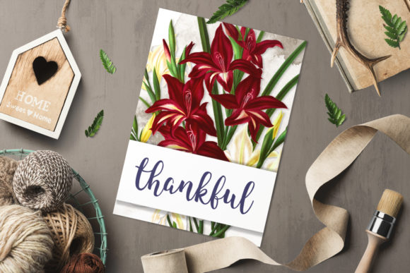 White and Scarlet Gladiolus Graphic Illustrations By Enliven Designs - Image 4