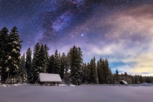 Print on Demand: Winter Forest at Night Graphic Photos By Aleš Krivec