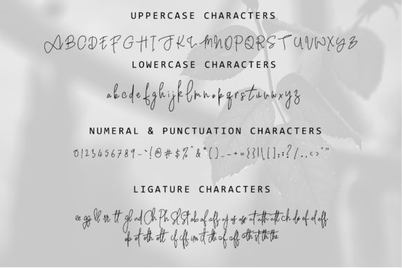 Witherscollin Family Font By thomasaradea Image 8
