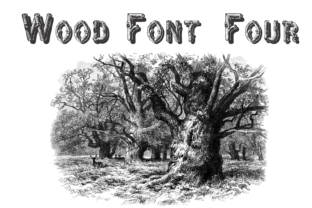 Wood Font Four Font By Intellecta Design