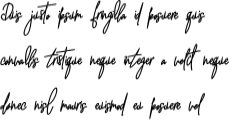 witherscollin-bold-italic