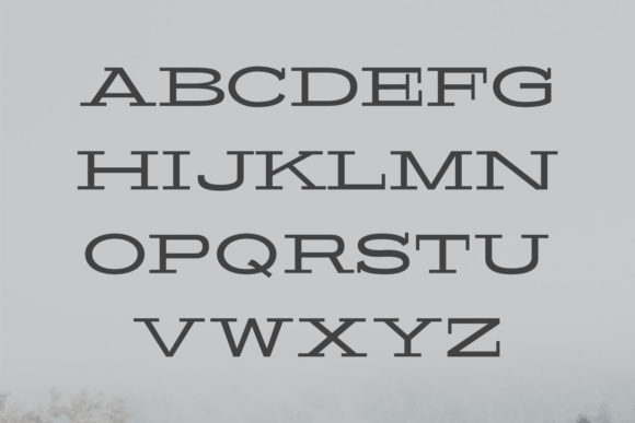Print on Demand: Banquo Family Serif Font By Creative Tacos - Image 2