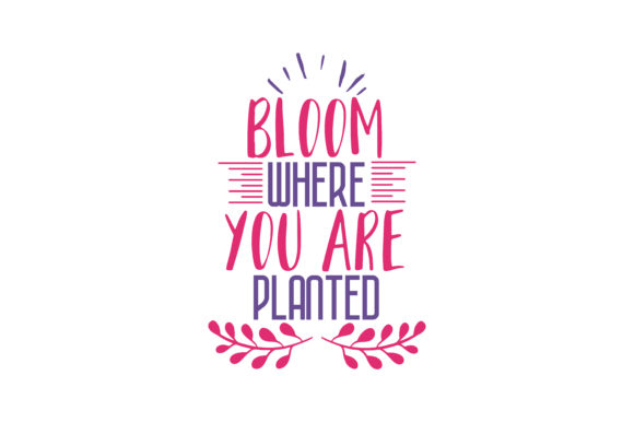 Download Free Bloom Where You Are Planted Quote Svg Cut Graphic By Thelucky for Cricut Explore, Silhouette and other cutting machines.