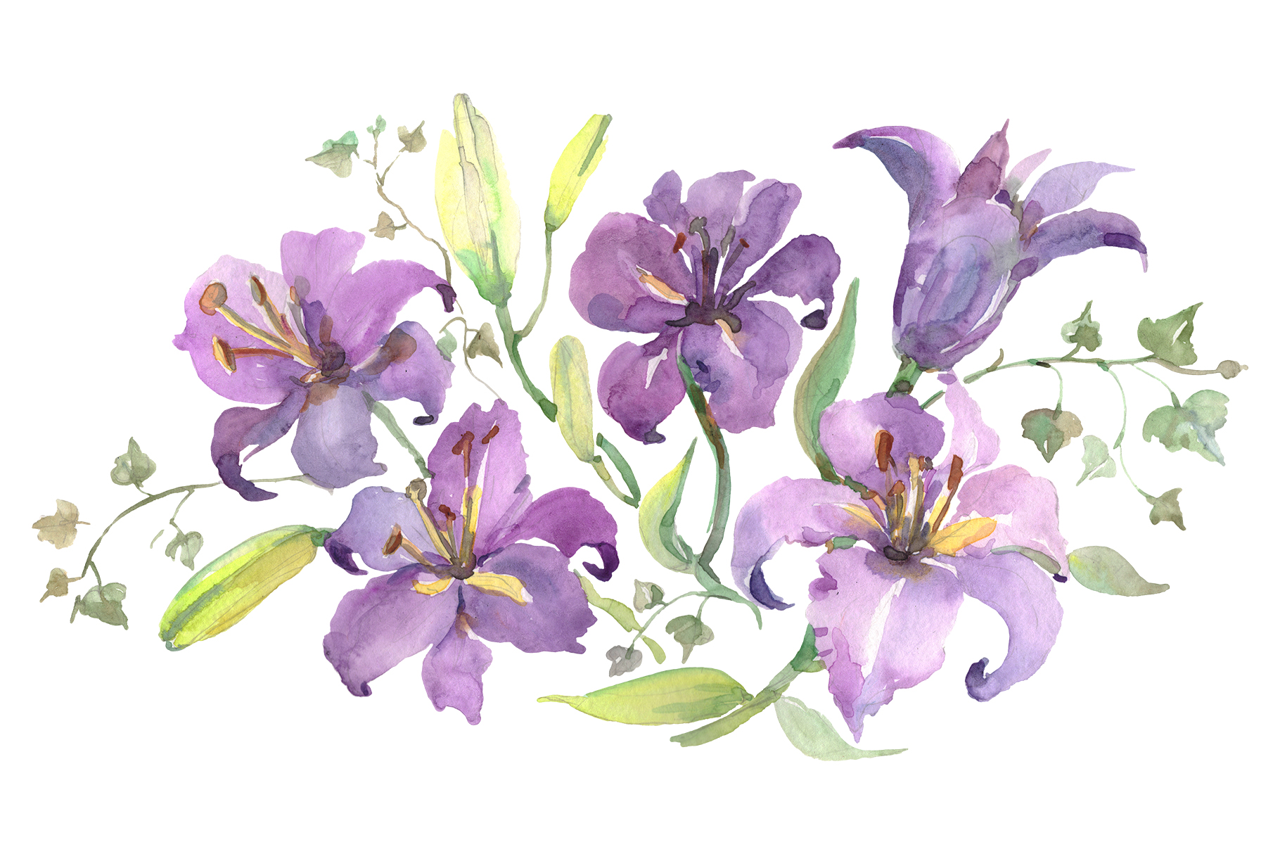 Download Free Bouquet With Purple Lilies Watercolor Png Graphic By Mystocks for Cricut Explore, Silhouette and other cutting machines.