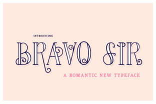 Bravo Sir Family Serif Font By Salt & Pepper Designs
