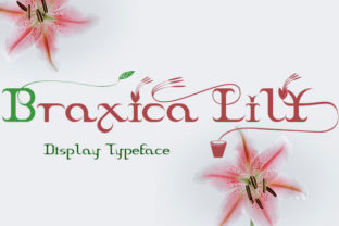 Print on Demand: Braxica Lily Display Font By Black Lotus
