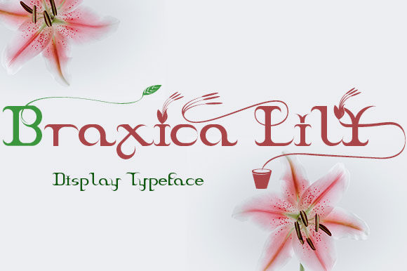 Print on Demand: Braxica Lily Display Font By Black Lotus - Image 1