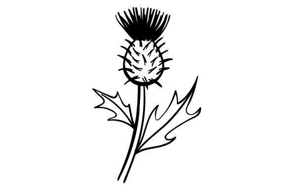 Cartoon Thistle Scotland Craft Cut File By Creative Fabrica Crafts - Image 2