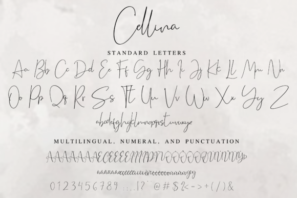 Print on Demand: Cellina Script & Handwritten Font By Fridaytype - Image 14
