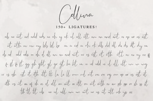 Print on Demand: Cellina Script & Handwritten Font By Fridaytype - Image 15