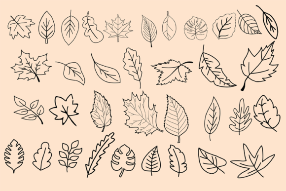 Dividers and Leaves Graphic Objects By carrtoonz - Image 7