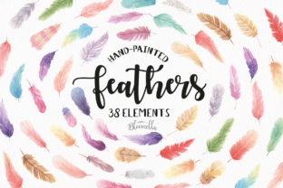 Feather Elements Watercolor Graphic Illustrations By Bloomella