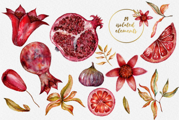 Print on Demand: Floral Collection of Pomegranate Graphic Illustrations By LiterkaEm Store - Image 4