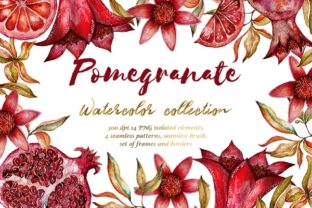 Floral Collection of Pomegranate Graphic By LiterkaEm Store