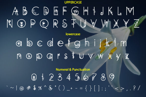 Print on Demand: Flowrish Decorative Font By da_only_aan - Image 2