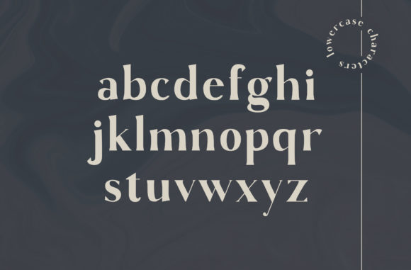 Print on Demand: Gaskin Serif Font By Christine Teixeira - Image 2