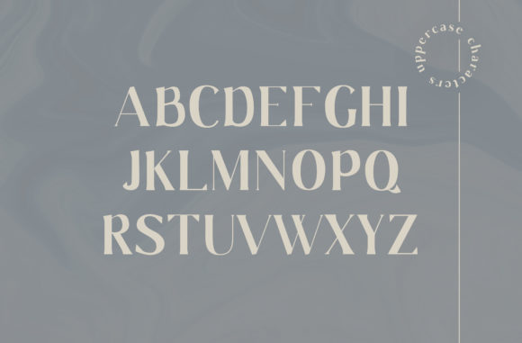 Print on Demand: Gaskin Serif Font By Christine Teixeira - Image 3