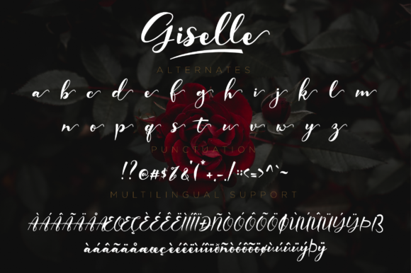 Print on Demand: Giselle Script & Handwritten Font By NissaStudio - Image 12