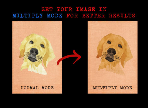 Golden Terrier Dog Graphic Illustrations By Ambar Art - Image 3