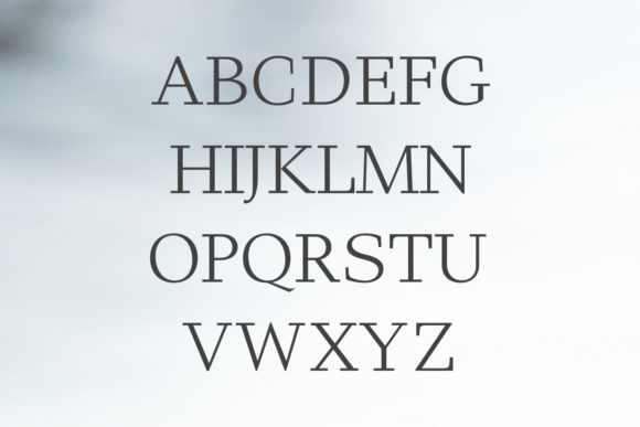 Print on Demand: Haddie Family Serif Font By Creative Tacos - Image 2
