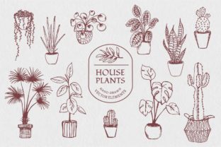 Illustrations of Various House Plants Graphic By Anna Karoline