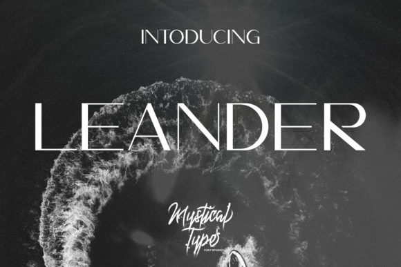 Print on Demand: Leander Sans Serif Font By MysticalType - Image 1