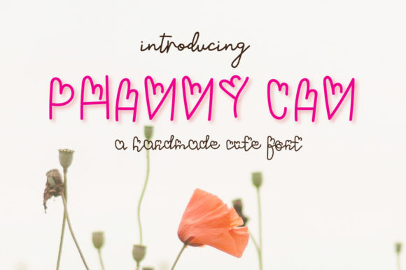 Print on Demand: Phanny Can Decorative Font By Design 2 Last