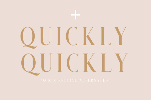 Print on Demand: Qualey Serif Font By craftsupplyco - Image 2
