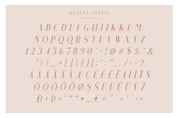 Print on Demand: Qualey Serif Font By craftsupplyco - Image 9