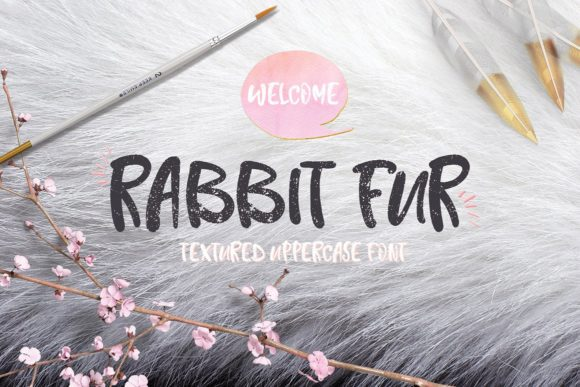 Rabbit Fur Script & Handwritten Font By Creativeqube Design