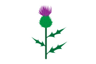 Realistic Thistle Craft Design By Creative Fabrica Crafts
