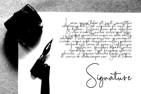 Scripty Font By MaxnorType Image 3