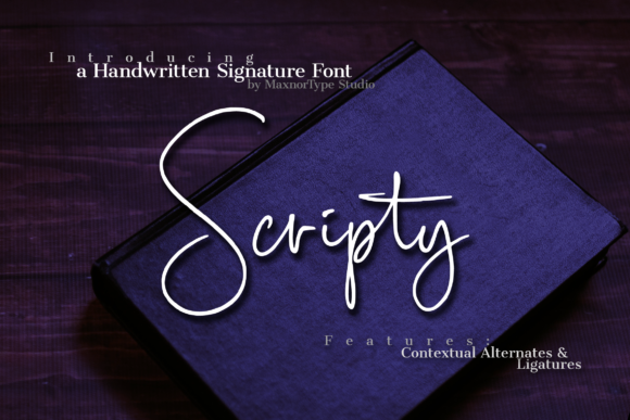 Scripty Font By MaxnorType Image 1