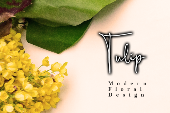 Scripty Font By MaxnorType Image 8