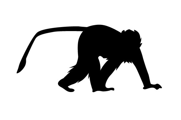 Download Free Silhouette Of Monkey Svg Cut File By Creative Fabrica Crafts SVG Cut Files