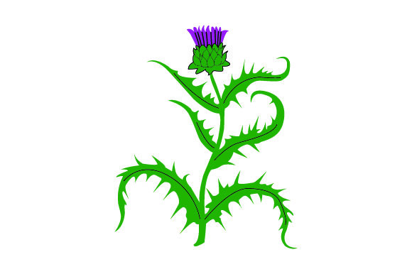 Thistle Scotland Craft Cut File By Creative Fabrica Crafts
