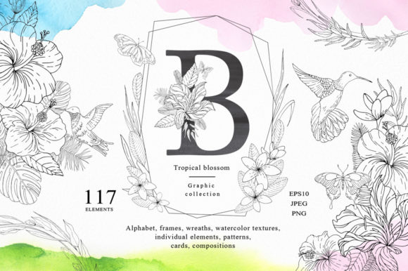 Tropical Blossom Graphic Collection Graphic By Nata Art Graphic