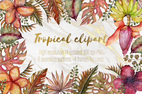 Print on Demand: Tropical Clipart Set Graphic Illustrations By LiterkaEm Store