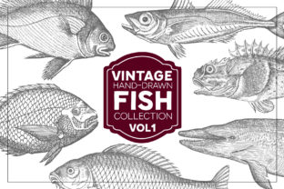 Vintage Fish Collection Graphic By grin3