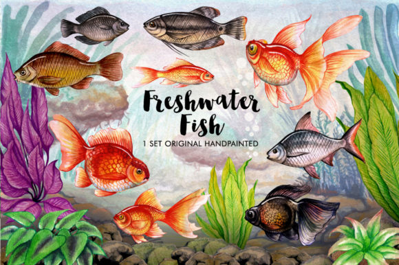 Watercolor Fish Lover Graphic Illustrations By Graphobia