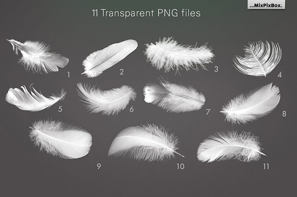 Print on Demand: White Feathers Overlays Graphic Layer Styles By MixPixBox - Image 5