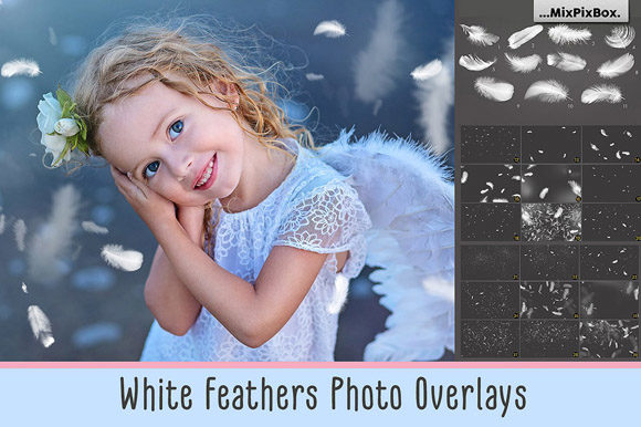 Print on Demand: White Feathers Overlays Graphic Layer Styles By MixPixBox