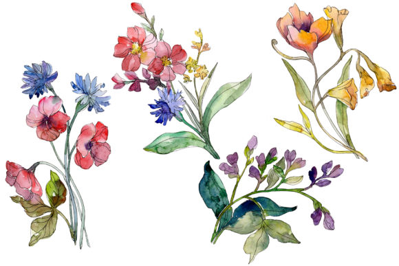 Print on Demand: Wildflowers the Beauty Watercolor Graphic Illustrations By MyStocks