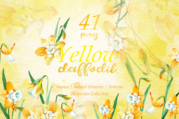 Print on Demand: Yellow Daffodil Watercolor Png Graphic Illustrations By MyStocks