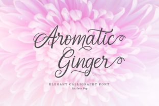 Aromatic Ginger Font By JavaPep