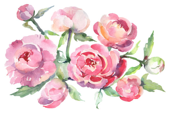 Download Free Bouquet With Peonies Watercolor Png Graphic By Mystocks for Cricut Explore, Silhouette and other cutting machines.